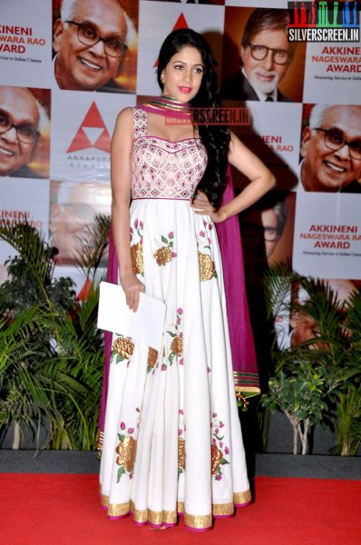 actress-lavanya-tripathi-at-anr-awards-2013-photos-005.jpg