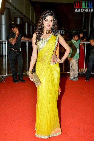 celebrities-at-cinemaa-awards-2015-photos-066.jpg