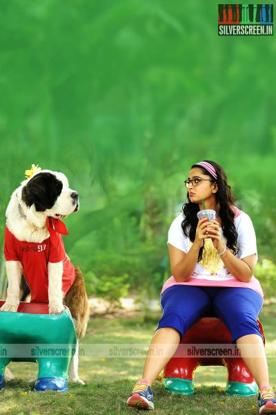 Inji Idupazhagi Movie Stills