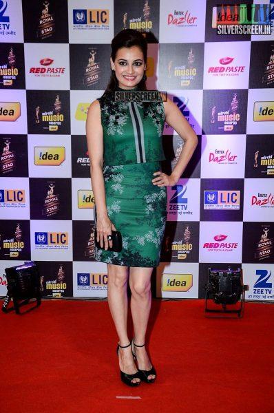 celebrities-at-the-radio-mirchi-awards-red-carpet-photos-0009.jpg