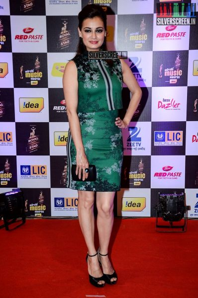 celebrities-at-the-radio-mirchi-awards-red-carpet-photos-0013.jpg