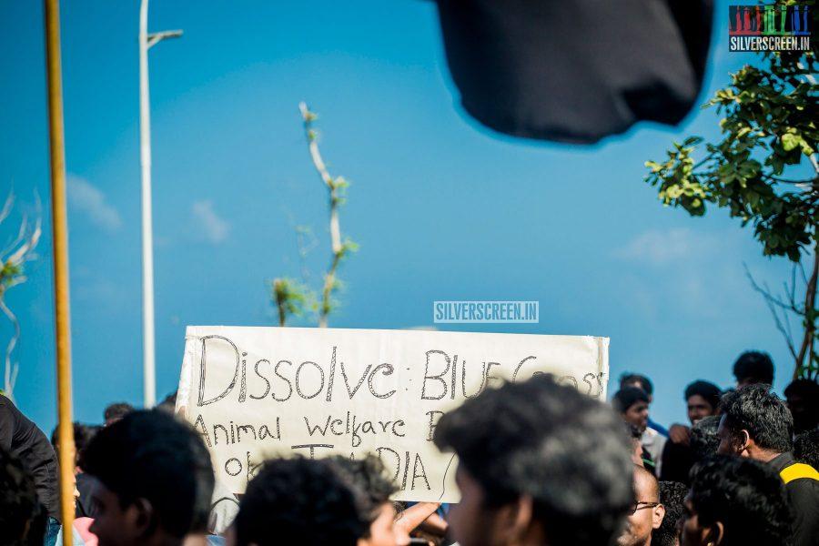 pictures-protest-jallikattu-marina-beach-photos-0009.jpg