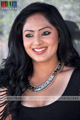 Nikesha Patel Photoshoot Stills