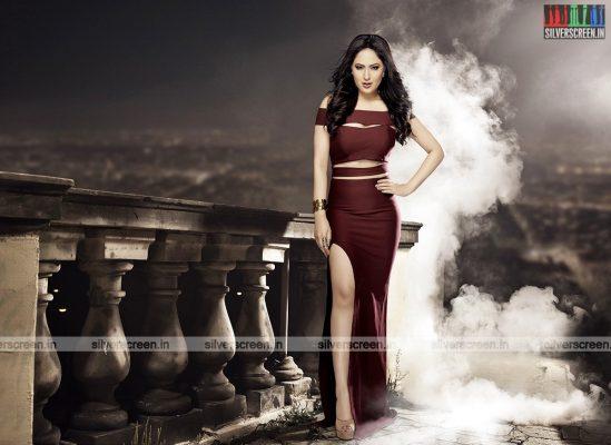 actress-nikesha-patel-photoshoot-stills-0159.jpg