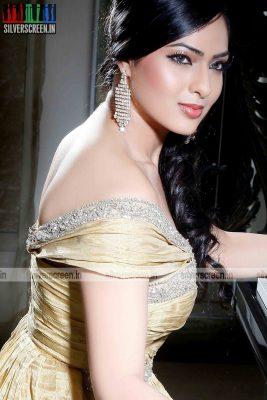 actress-nikesha-patel-photoshoot-stills-136.jpg