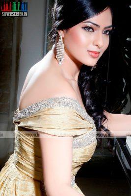 actress-nikesha-patel-photoshoot-stills-138.jpg