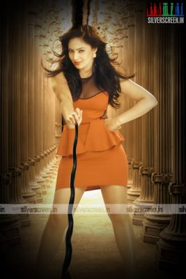 actress-nikesha-patel-photoshoot-stills-139.jpg