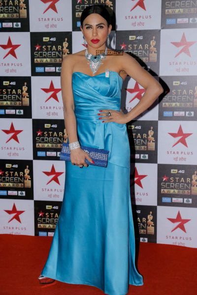 Star Screen Awards 2017:  The Red Carpet Function