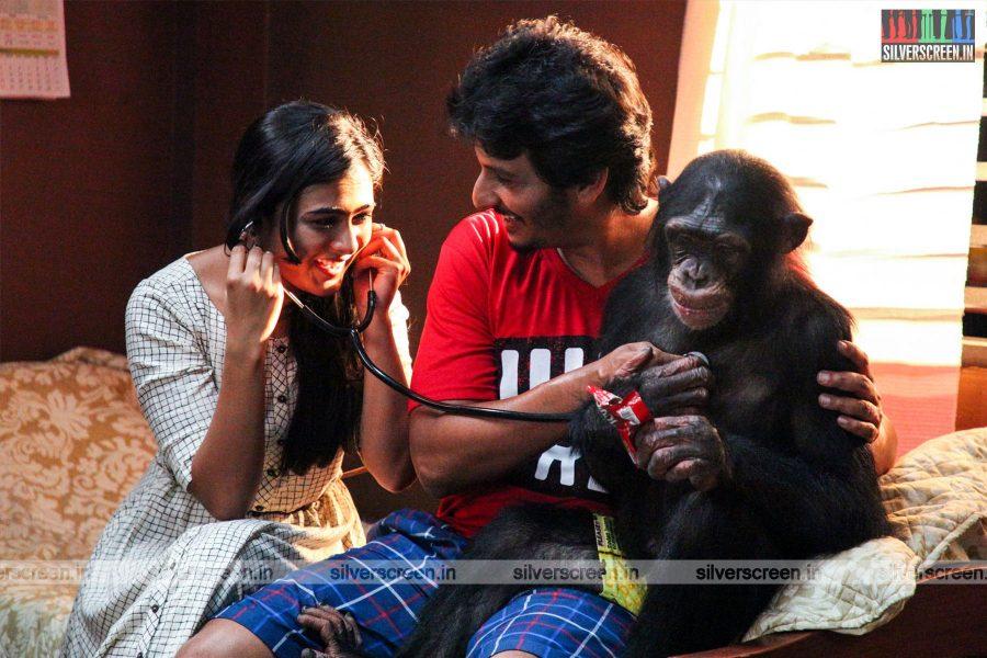 Gorilla Movie Stills Starring Jiiva and Shalini Pandey