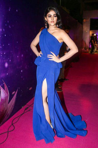 Palal Lalwani At The Zee Apsara Awards