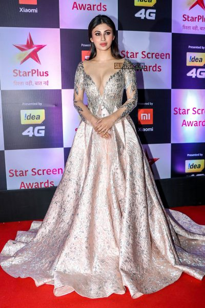 Mouni Roy At The 'Star Screen Awards 2018'