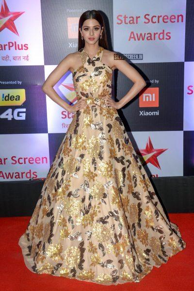 Vedhika At The 'Star Screen Awards 2018'
