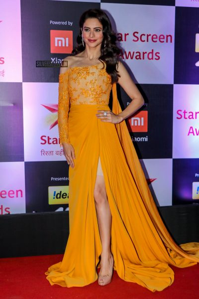 Celebrities At The 'Star Screen Awards 2018'