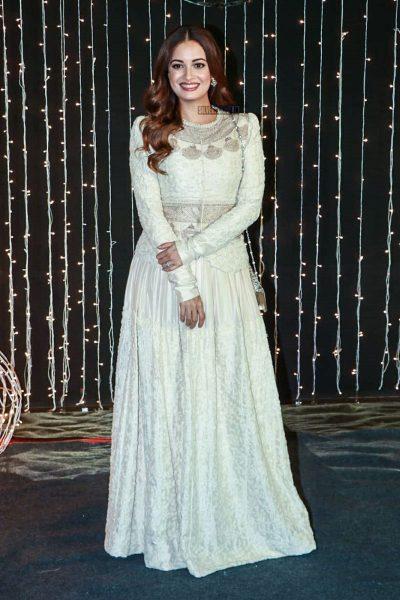 Dia Mirza At Priyanka Chopra And Nick Jonas Wedding Reception