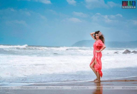 Hamsa Nandini Photoshoot Stills