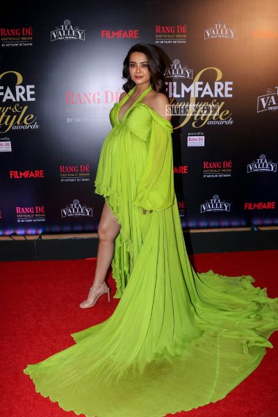 Surveen Chawla At The Filmfare Glamour and Style Awards 2019
