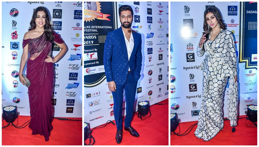 Celebrities At Dadasaheb Phalke International Film Festival Awards 2019