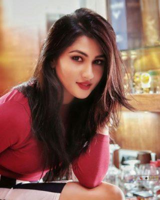 Ragini Chandran modeling