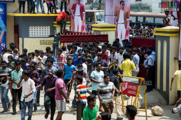 Theri FDFS Celebrations at Albert